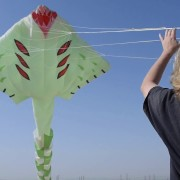 Alfarsi Kites Initiative By Noura Almannaie